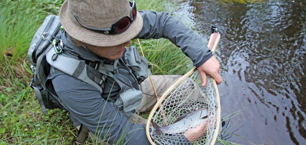 Loos-Hamra fiskevårdsområde